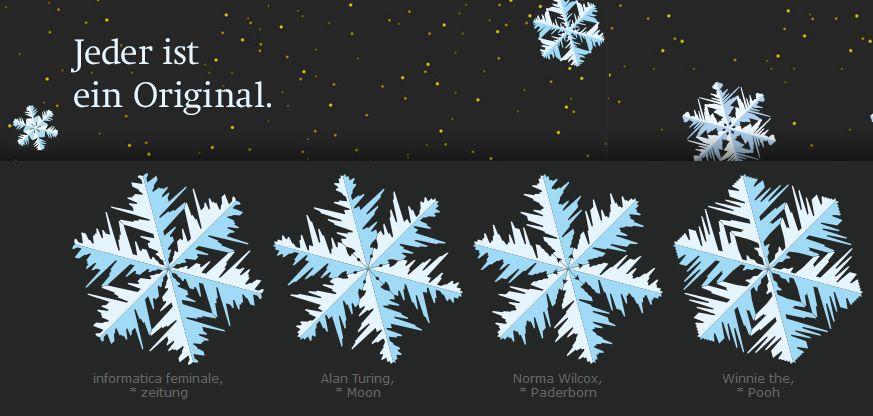 Schneesterne-Bild
