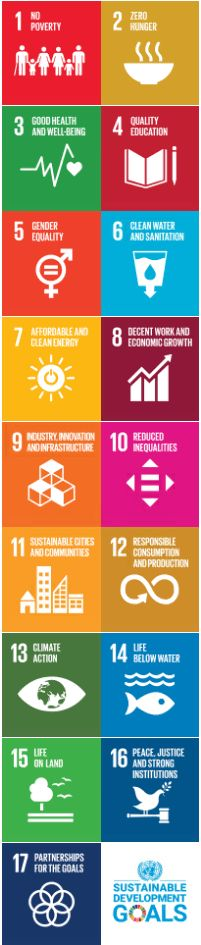 17 Icons Development Goals